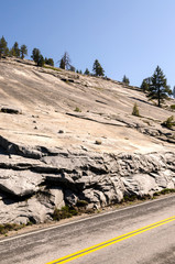 rocks and trees in Yosemite National Park in California © sergioboccardo