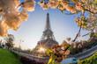 Leinwanddruck Bild - Eiffel Tower during spring time in Paris, France