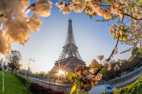 Eiffel Tower during spring time in Paris, France © samott