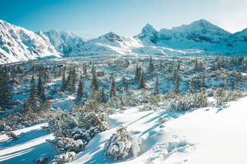 Spectacular landscape of snowy mountains in winter