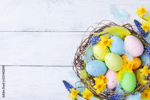 Сolorful Easter eggs in nest, feather and spring flowers on white table top view. Holiday card or banner. © juliasudnitskaya