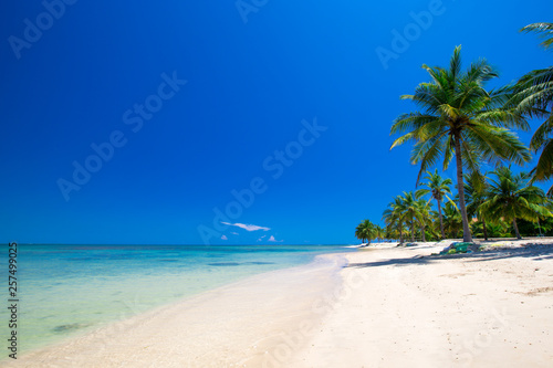 tropical beach in Sri Lanka . Summer holiday and vacation concept for tourism. - 257499025