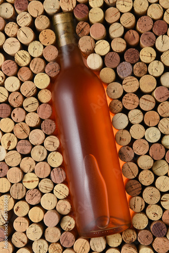 A bottle of white zinfandel surrounded by corks standing on end filling the frame - 257555639