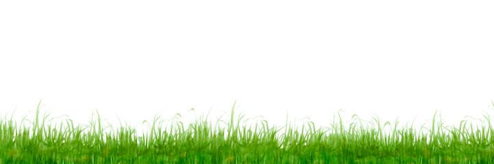 草原 植物 背景 水彩 黄緑 © tada