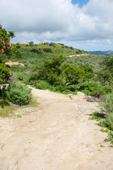 Aliso & Woods Canyon Wilderness trail in the spring after a rainy season, Laguna Beach, CA hiking trails. © Akcents