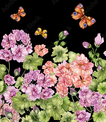 Beautiful floral background with pelargonium flowers and butterflies on black background. Seamless botanical pattern, border. Watercolor painting. Hand painted illustration © katiko2016