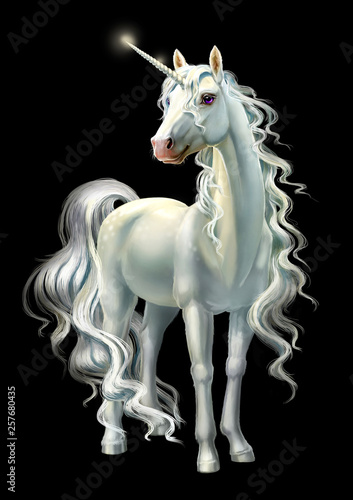 unicorn, full-length isolated on black © Antracit