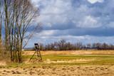 Fototapeta Fototapety na sufit - Narwiański Park Narodowy. Rzeka Narew. Wiosna na Podlasiu © podlaski49