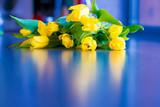 Fototapeta Tulips - kwiaty na Dzień Matki © Bernadeta
