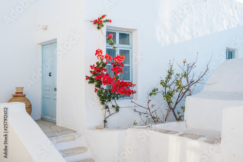 White house facade with blue door, window and  beautiful flowers in Naoussa town, Paros island, Cyclades
