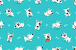Vector cartoon character bull terrier dog seamless pattern for design. - 257967641