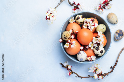Eggs and Branches in Blossom, Easter Holiday Background