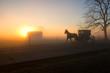 Amish Buggy Approaches at Dawn with Sun on Horizon behind Barn