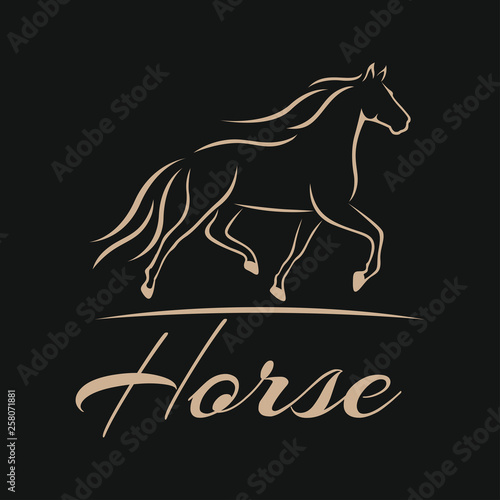Modern horse logo © val1982