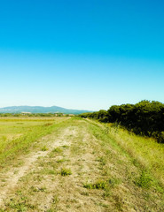 Tuscany, view of meadow and Apennines in the background. © Jan