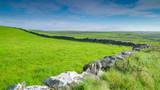 11505_The_green_farm_land_in_Ireland.jpg