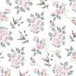 Floral background for textiles. - 258228013