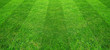 Leinwanddruck Bild - Green grass field pattern background for soccer and football sports. Green lawn pattern and texture for background.