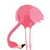 elegant flamingo bird icon