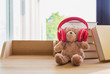 Cute teddy bear wearing red headphone learing stack book. - 258352632