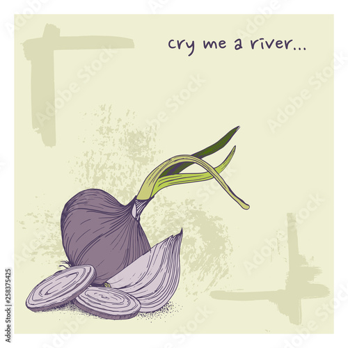 Vector greeting card with onions and phrase cry me a river funny background with vegetable  © Лилия Судакова