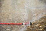 Fototapeta Bathroom - Zraszacz wodny w lecie dla ochłody © Heroc
