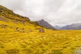 Fototapeta Fototapety z naturą - Typical amazing landscape of Iceland island, Europe © Marcin Krzyzak