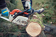 lumberman with chainsaw cutting wood