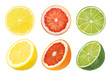 Leinwanddruck Bild - Collage of fresh citrus isolated on white background with clipping path