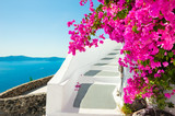 White architecture and pink flowers with sea view. Santorini island, Greece.