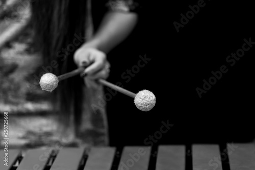 The hand of a girl playing a vibraphone in black and white - 258725668