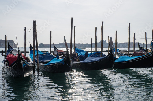 Many gondolas tied to long stumps in Venice  © Kirill