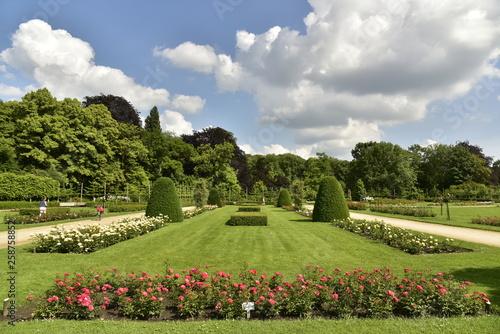 Parterre de roses rouges sur l'une des vastes pelouses de la roseraie du domaine provincial de Vrijbroekpark à Malines - 258758852