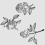 Vector rose flower tattoo pattern, floral fabric vintage wallpaper. Cute backdrop. - 258804265