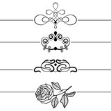Calligraphic Design Elements . Decorative Swirls, Scrolls and Dividers. Vintage Vector Illustration - 258804289