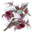 Fashion vector floral illustration with hummingbirds and hibiscus flowers