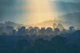 Fototapeta Fototapety na ścianę - sunset over the mountain, view of forest © chokniti