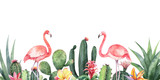 Watercolor vector banner tropical flowers, Flamingo and cacti isolated on white background.