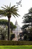 dome of St. Peter's Basilica in Vatican city, Vatican garden, Rome