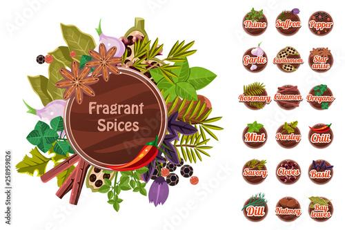 Fragrant spices set, thyme, saffron, pepper, garlic. cardamom, star anise, rosemary, cinnamon, oregano, mint, parsley, chilli, cloves, savory, basil, dill, nutmeg, bay leaf vector Illustration © topvectors