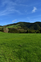 Stunning Rolling Hills in the Countryside of Sao Miguel © dejavudesigns