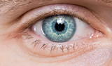 blue eye macro close-up