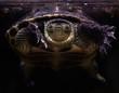 tortue volante - 259116852
