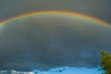 Fototapeta Tęcza - Rainbow in the sky. Weather after rain. All colors of the rainbow. Beautiful nature. Weather forecast. © Олег Копьёв