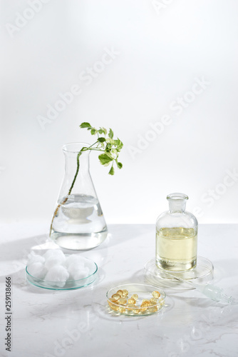alternative herb medicine. herbal vitamin on white background. © makistock