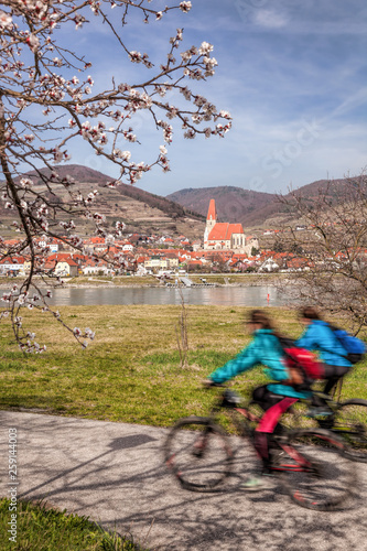 Leinwanddruck Bild Cyclists against Weissenkirchen village in Wachau during spring time, Austria