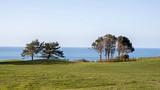 Fototapeta Fototapety z naturą - Vue sur mer du haut des falaises Normandes © Vely