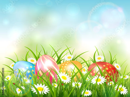 Blue Nature Background with Easter Eggs in Grass - 259150808