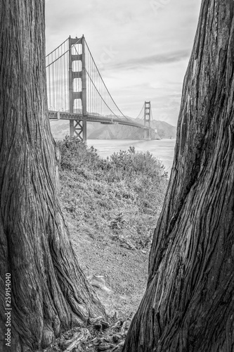 fototapeta na ścianę Goden Gate Bridge San Francisco