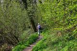 Fototapeta Fototapeta las, drzewa - Randonnée printanière , Clermont Ferrand, puy de Chanturgue, Puy de Dôme, Auvergne © Bernard 63